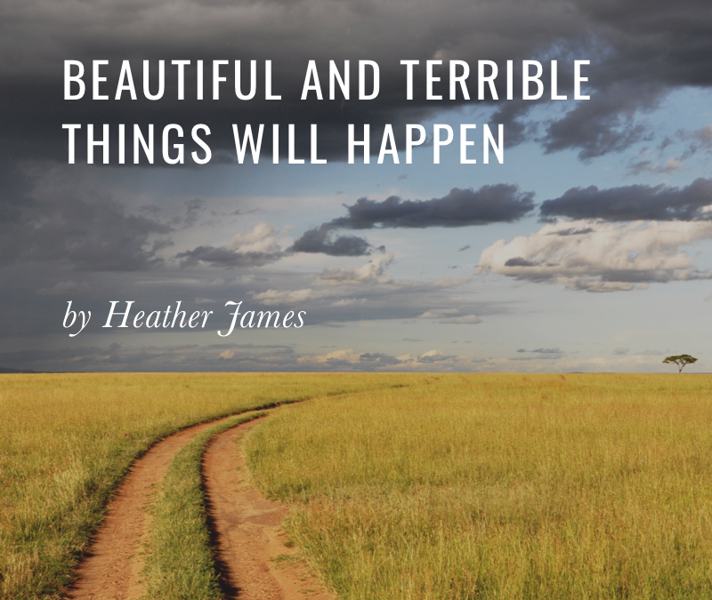 Beautiful and Terrible Things Will Happen