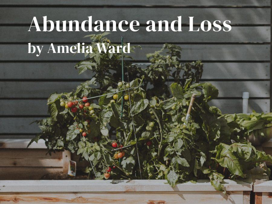 Abundance and Loss